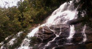 Yercaud Kiliyur Falls
